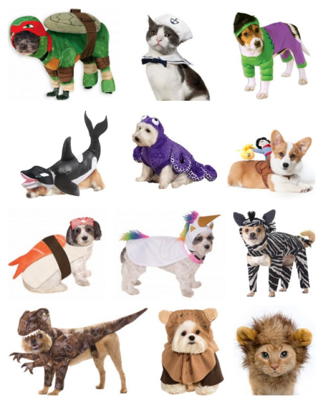 halloween costumes for pets dogs cats