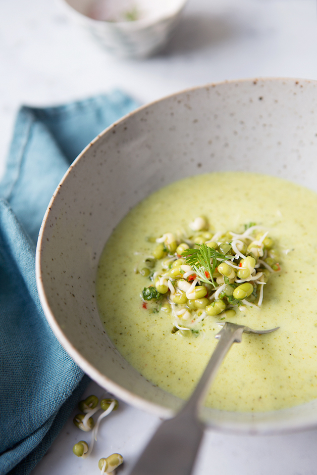 49. Creamy Curried Broccoli Soup with Coriander Marinated Mung Bean ...