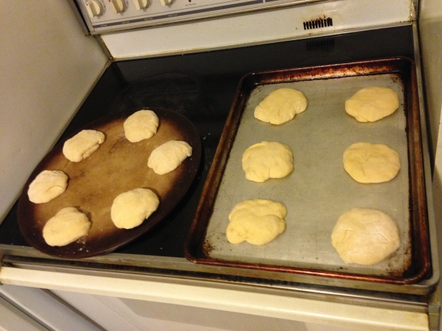 Look at all this unbaked pan dulce! So much potential!