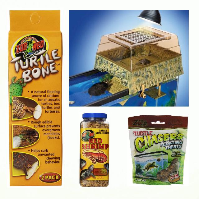 Turtle640x640