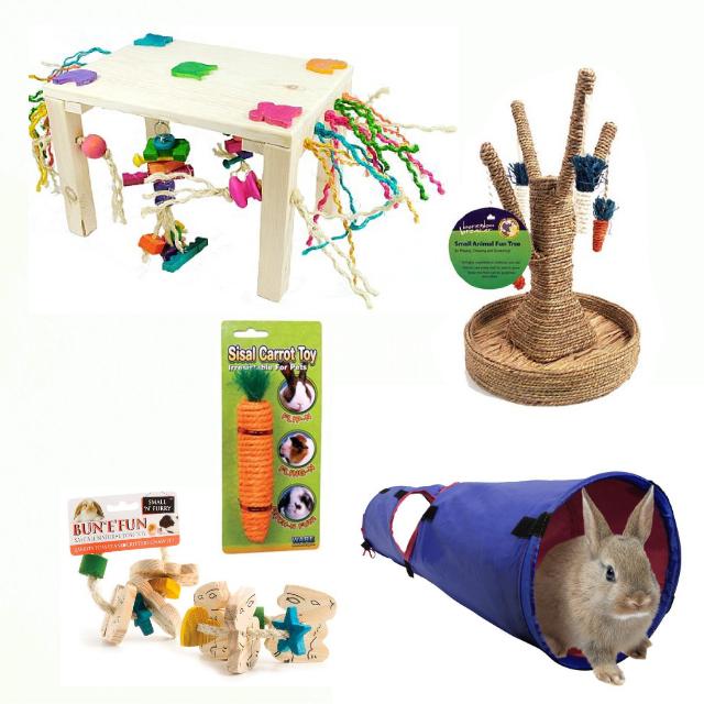 bunny640x640