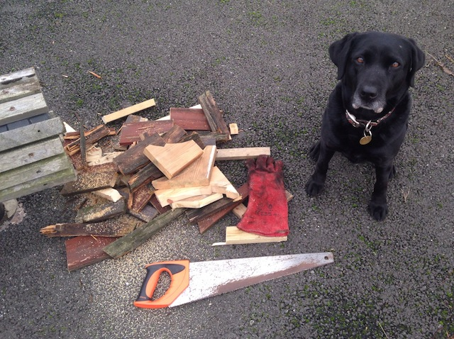 Billie's special job is to find waste wood on nearby building sites and saw it up.