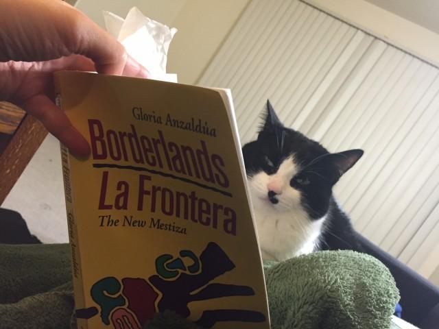 Sonia's cat.