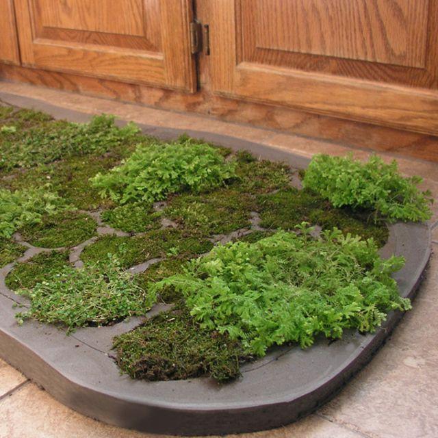640x640 01 ds cdn write upload image ED  Staycation Grab Bag DIY Ideas and  Inspiration. Moss Shower Mat Reviews