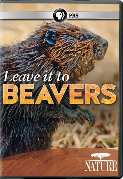 leave-it-to-beavers