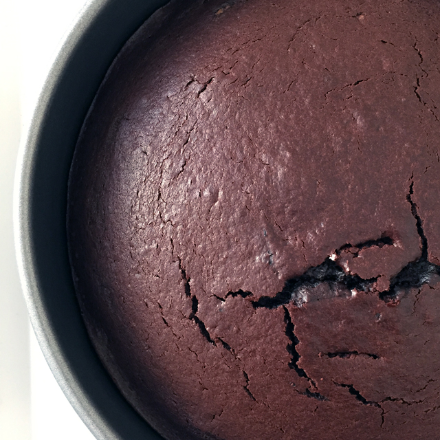 unfrosted-chocolate-cake