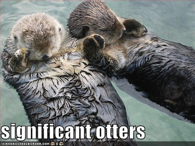 significant_otters