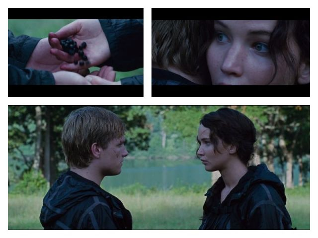 Katniss_suicide