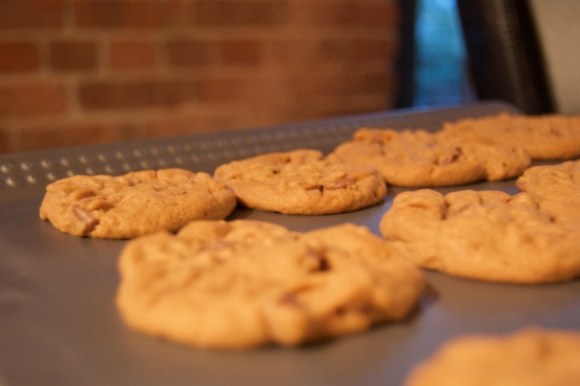 There is a celiac in our household so all our cookies and baked goods are made with alternative flours and ingredients; thankfully I have stumbled upon some truly excellent recipes I never would have tried before.
