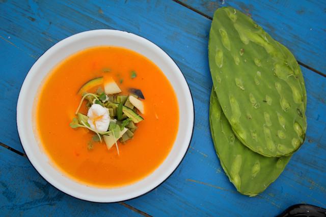 Nopale Soup