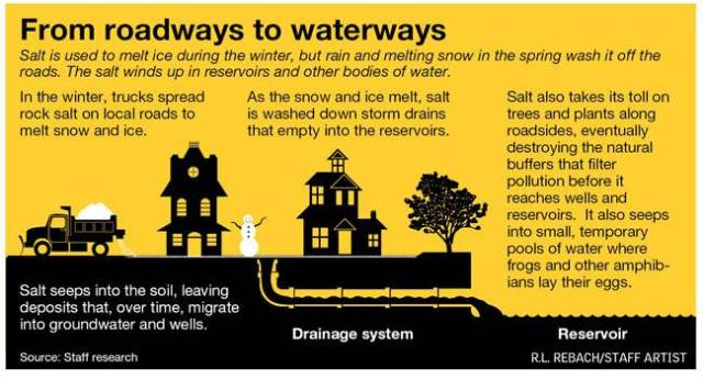From roadways to waterways. Salt is used to melt ice during the winter, but rain and melting snow in teh spring wash it off the roads. The salt winds up in reservoirs and other bodies of water. Salt seeps into the soil, leaving deposits that, over time, migrate into groundwater and wells. In the winter, trucks spread rock salt on local roads to melt snow and ice. Drainage system. As the snow and ice melt, salt is washed down storm drains that empty into the reservoirs. Reservoir. Salt also takes its toll on trees and plants along roadsides, eventually destroying the natural buffers that filter pollution before it reaches wells and reservoirs. It also seeps into small, temporary pools of water where frogs and other amphibians lay their eggs. Source: staff research. R.L., REBACK/STAFF ARTIST.