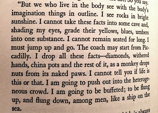 This is an excerpt from The Waves by Virginia Woolf, published in 1931. It's a book that I love and that I carry around, in case I need a reminder to inject tenderness into my daily life.