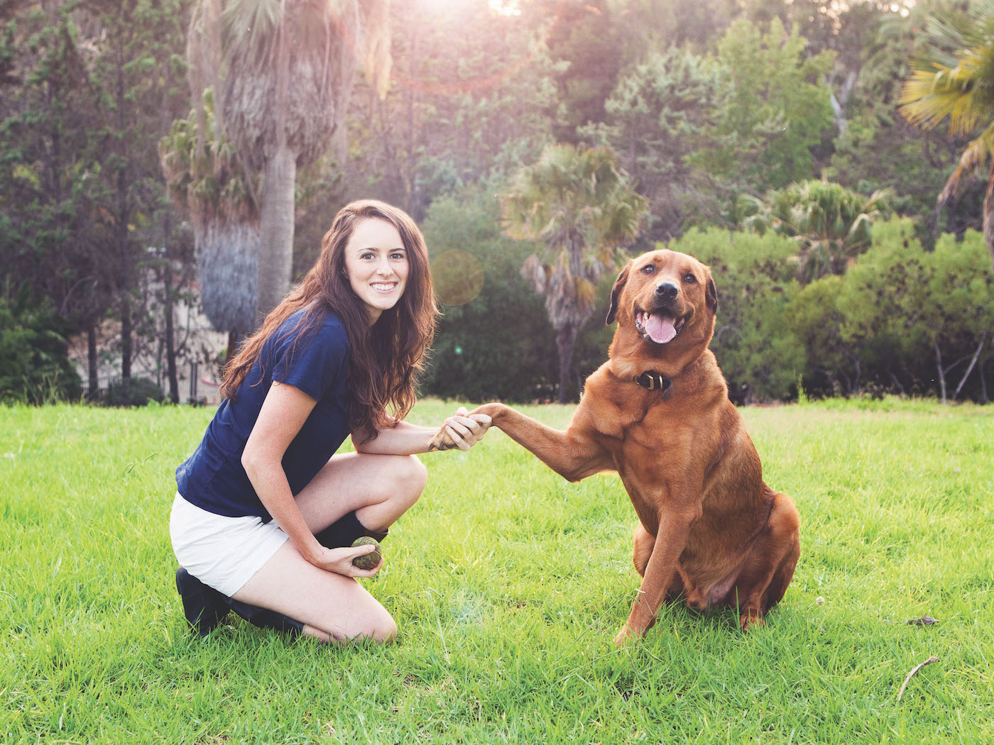 How To Build A Dog Training Business