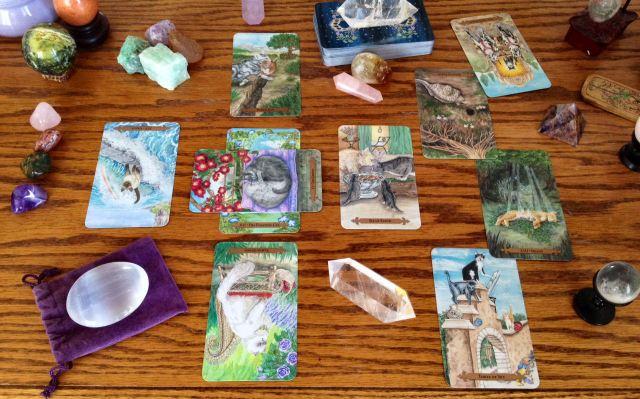 mystical-cats-tarot-06-reading