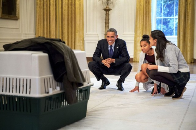 OFFICIAL WHITE HOUSE PHOTOS BY PETE SOUZA