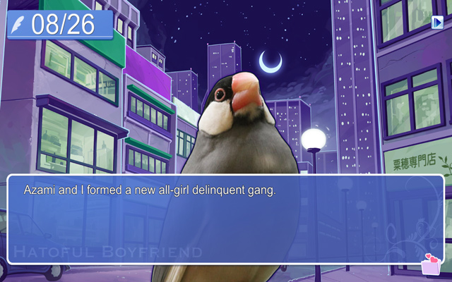Somebirdie To Love  A    Hatoful Boyfriend    Review   Autostraddle