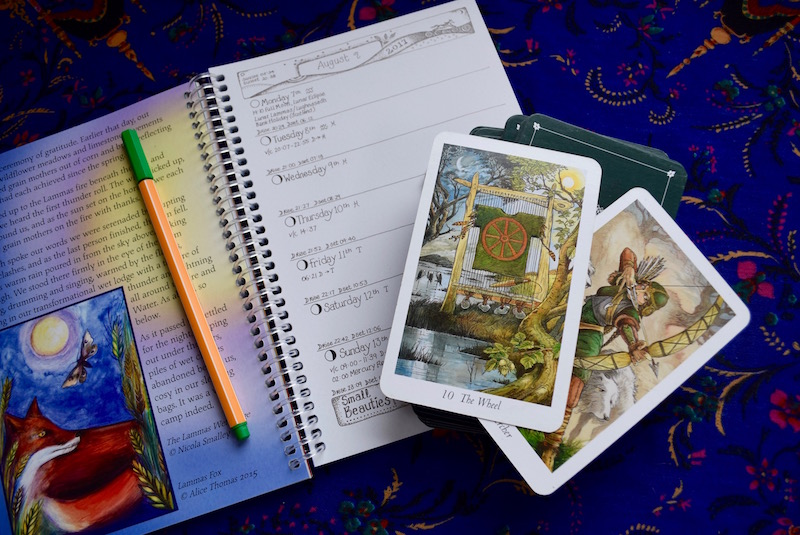 Fool S Journey Using Tarot Cards To Figure Out Timings Autostraddle
