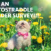 Autostraddle Reader Survey 2016: We Wanna Know All About You!