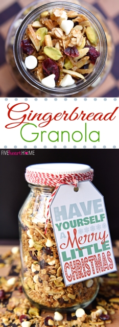 01-gingerbread-granola-with-cranberries-pistachios-white-chocolate-chips-by-five-heart-home_700pxcollage