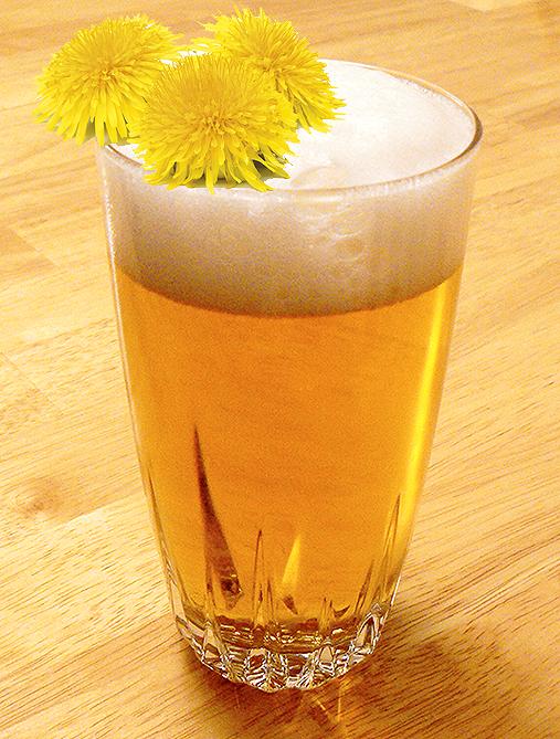 Dandelion Beer