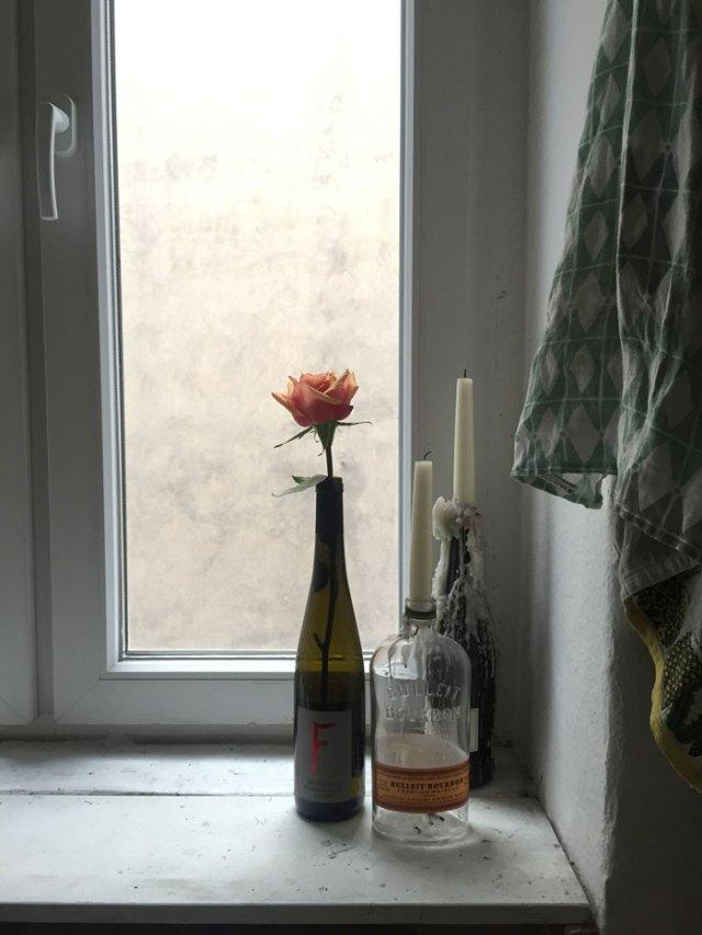 rose in window