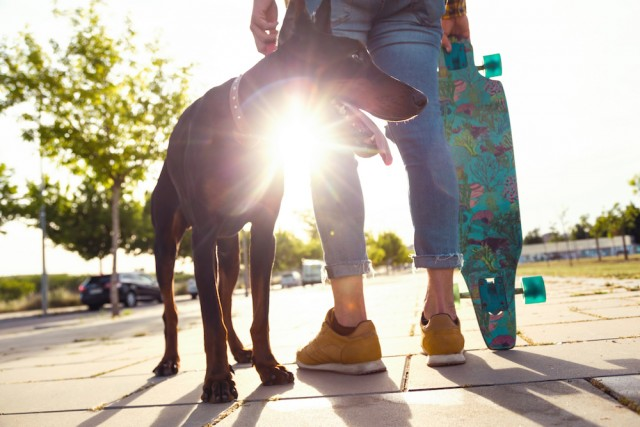 dog and lesbian with a skateboard and the sun in the background