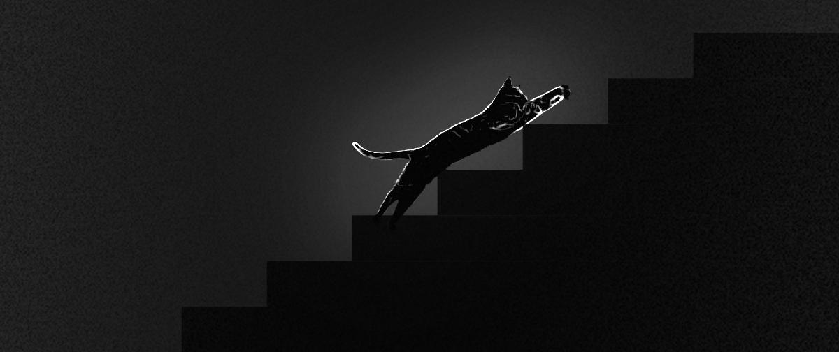heather's ghost cat