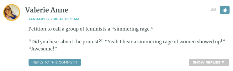"Petition to call a group of feminists a ""simmering rage."" ""Did you hear about the protest?"" ""Yeah I hear a simmering rage of women showed up!"" ""Awesome!"""