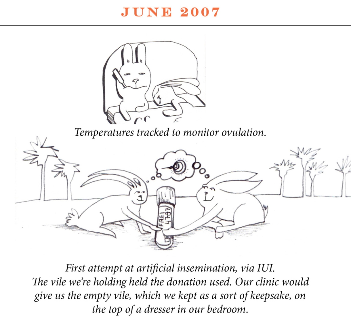 """June 2007 Image description: The two rabbits are in their bed. One sleeps soundly and the other is sitting up against the headboard with a thermometer in her mouth, looking tired. Caption: """"Temperatures tracked to monitor ovulation."""" Image description: The rabbits smile at each other, each with one hand on the vile that once held the sperm that was used. They share a thought bubble with an image of insemination. Caption: """"First attempt at artificial insemination, via IUI. The vile we're holding held the donation used. Our clinic would give us the empty vile, which we kept as a sort of keepsake, on the top of a dresser in our bedroom."""""""