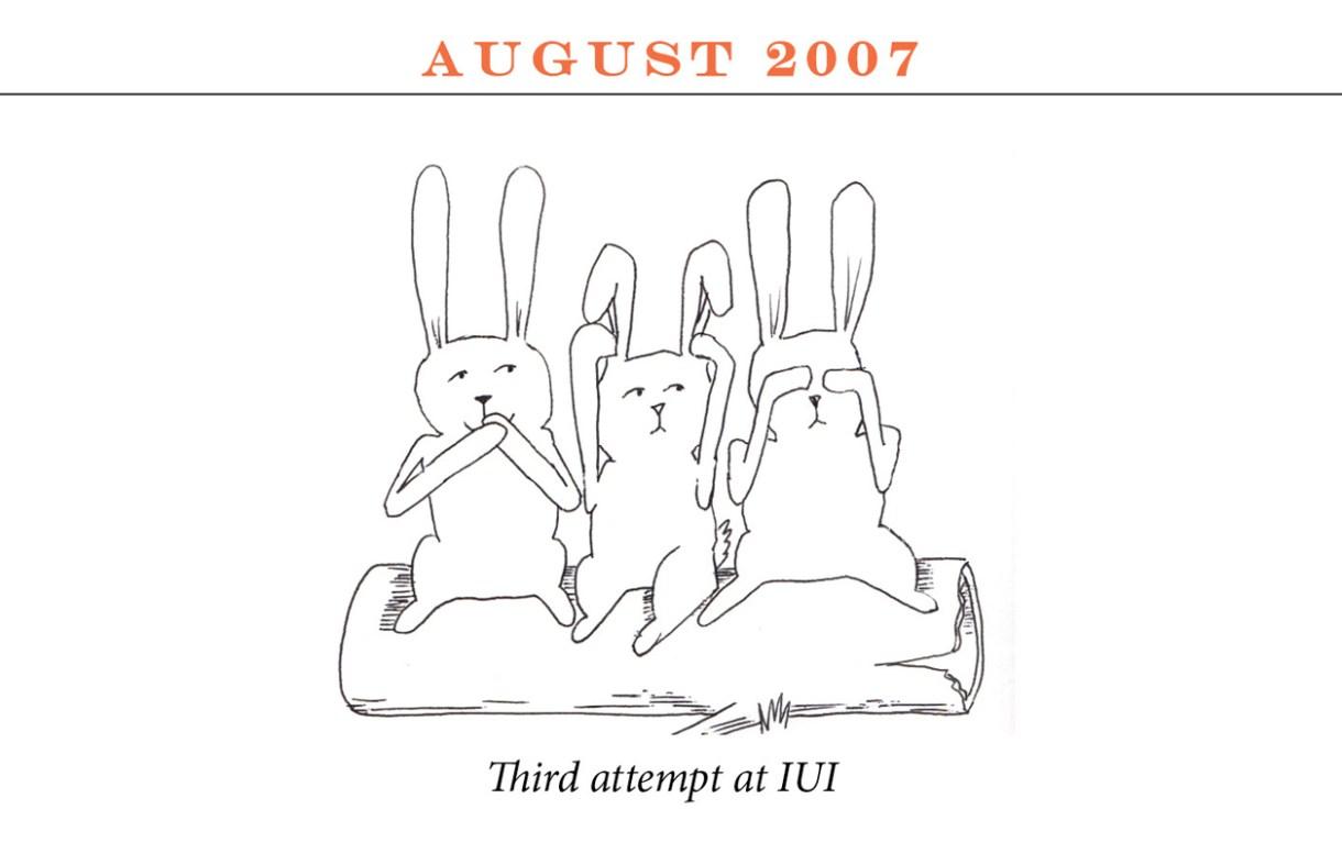 "August 2007 Image description: Three rabbits sit on a log miming the speak-no-evil, hear-no-evil, see-no-evil positions. Caption: ""Third attempt at IUI"""
