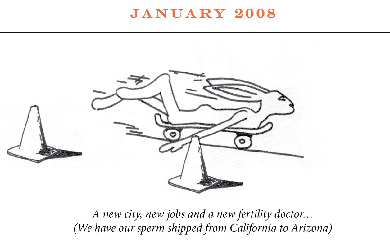 "January 2008 Image description: A rabbit rides a skateboard on her belly past two traffic cones. Caption: ""A new city, new jobs and a new fertility doctor… (We have our sperm shipped from California to Arizona)"""