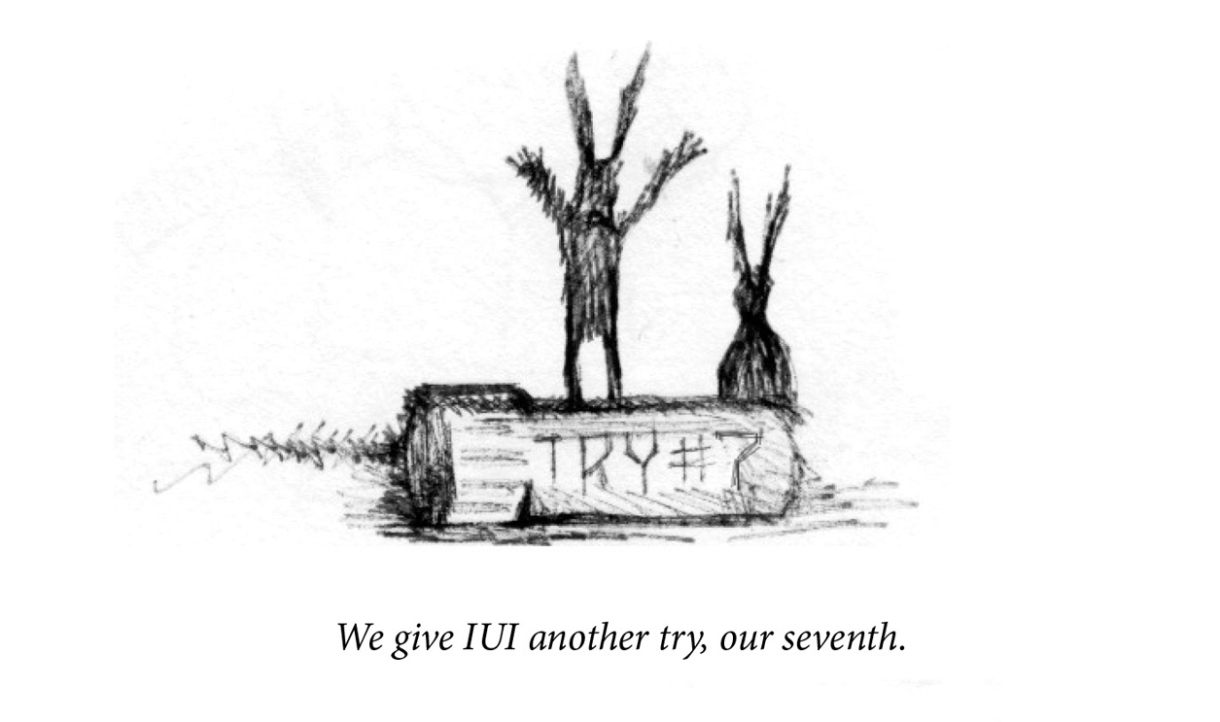 """Image description: Two rabbits are in silhouette, drawn as scratched lines. In the foreground a vile reads, """"Try #7"""". Caption: """"We give IUI another try, our seventh. """""""