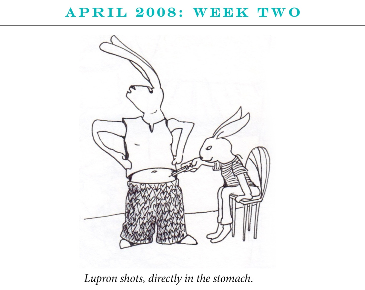 """April 2008: Week Two Image description: One rabbit sits on a chair giving the second rabbit a shot in the stomach. Caption: """"Lupron shots, directly in the stomach."""""""