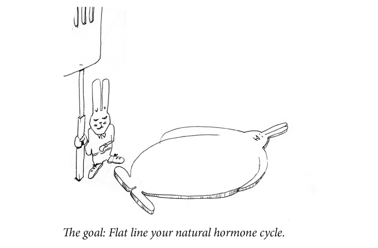 """Image description: One rabbit eyes her watch. In her other hand she holds a giant towering spatula over a second rabbit that is a flat, round pancake. Caption: """"The goal: Flat line your natural hormone cycle."""""""