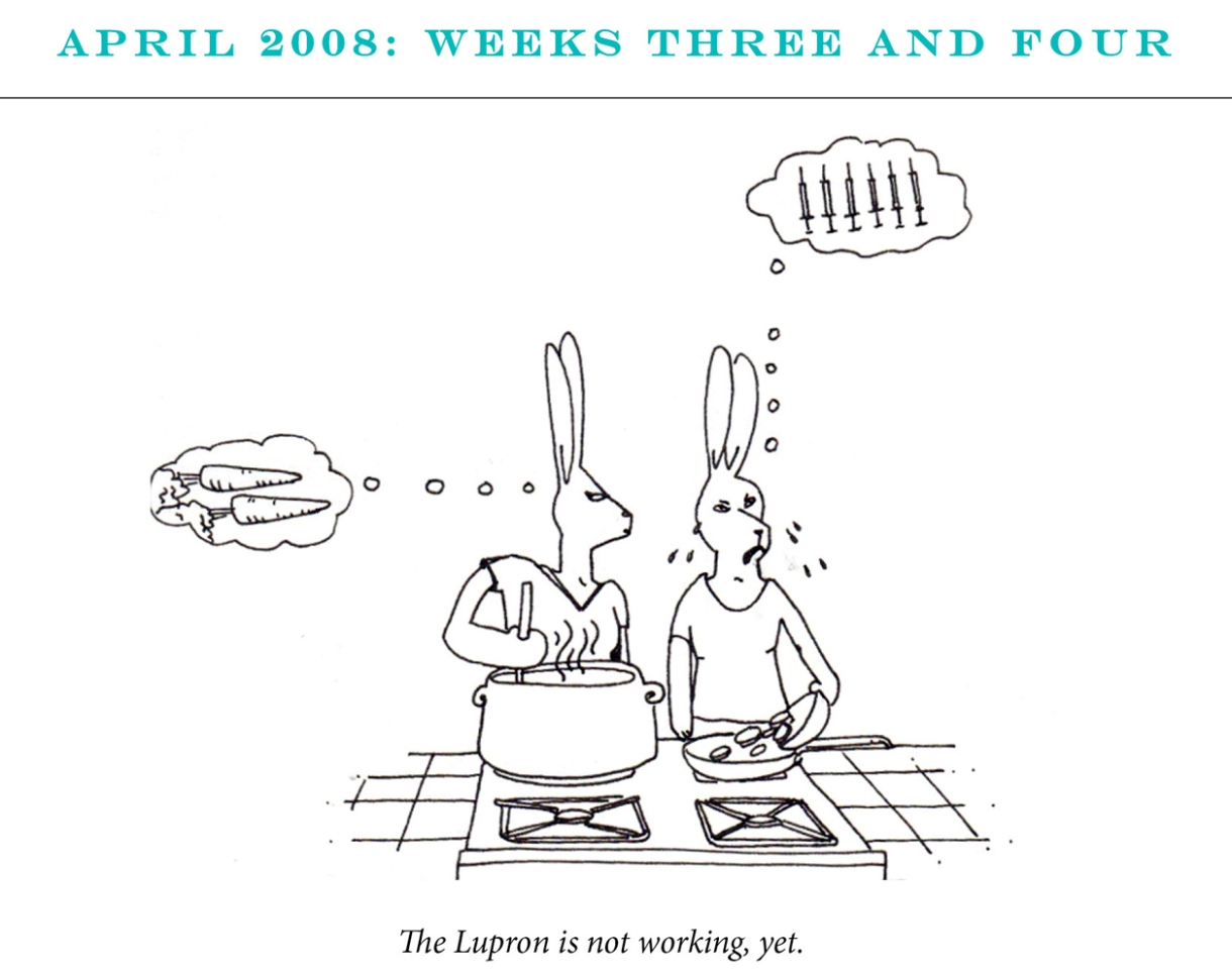"""April 2008: Weeks Three and Four Image description: Two rabbits cook together at a stove top. One looks confused and is thinking of carrots. The second is crying and thinking about a line of syringes. Caption: """"The Lupron is not working yet."""""""