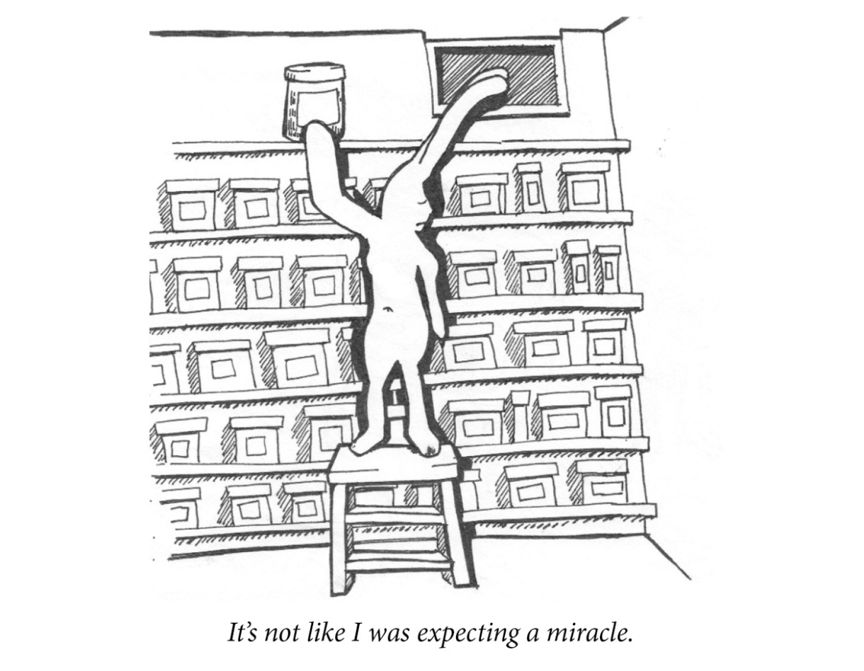 """Image description: A sad rabbit places a jar on the top row of basement set of shelves. All the shelves are lined with similar jars. Caption: """"It's not like I was expecting a miracle."""""""