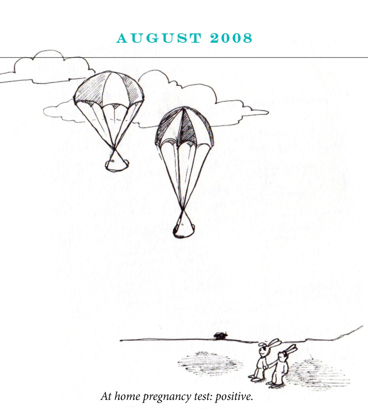 """August 2008 Image description: Two rabbits hold hands looking up at the sky, where two baby bundles float down from parachutes. Caption: """"At home pregnancy test: positive."""""""