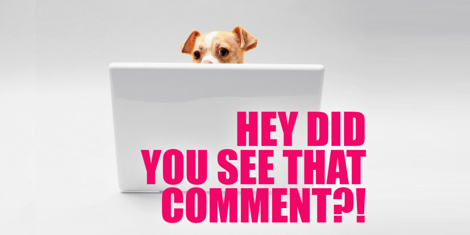 """A small dog peeking coyly over the top of a laptop with the words """"hey, did you see that comment?!"""""""