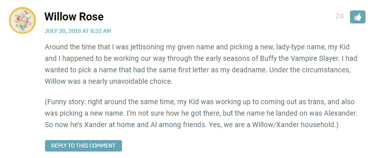 Around the time that I was jettisoning my given name and picking a new, lady-type name, my Kid and I happened to be working our way through the early seasons of Buffy the Vampire Slayer. I had wanted to pick a name that had the same first letter as my deadname. Under the circumstances, Willow was a nearly unavoidable choice. (Funny story: right around the same time, my Kid was working up to coming out as trans, and also was picking a new name. I'm not sure how he got there, but the name he landed on was Alexander. So now he's Xander at home and Al among friends. Yes, we are a Willow/Xander household.)