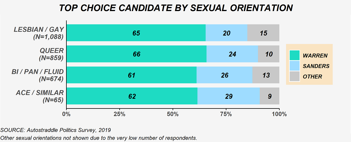 The chart shows top choice candidate selections by sexual orientation. Among lesbian / gay people (N = 1,088): 65% Warren, 20% Sanders, 15% other candidate. Among queer people (N = 859): 66% Warren, 24% Sanders, 10% other candidate. Among bisexual, pansexual, sexually fluid people (N = 674): 61% Warren, 26% Sanders, 13% other candidate. Among asexual or similar people (N = 65): 62% Warren, 29% Sanders, 9% other candidate. The other sexual orientations category is not shown due to the very low number of respondents.