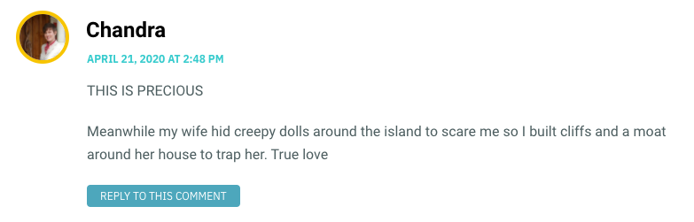 THIS IS PRECIOUS Meanwhile my wife hid creepy dolls around the island to scare me so I built cliffs and a moat around her house to trap her. True love