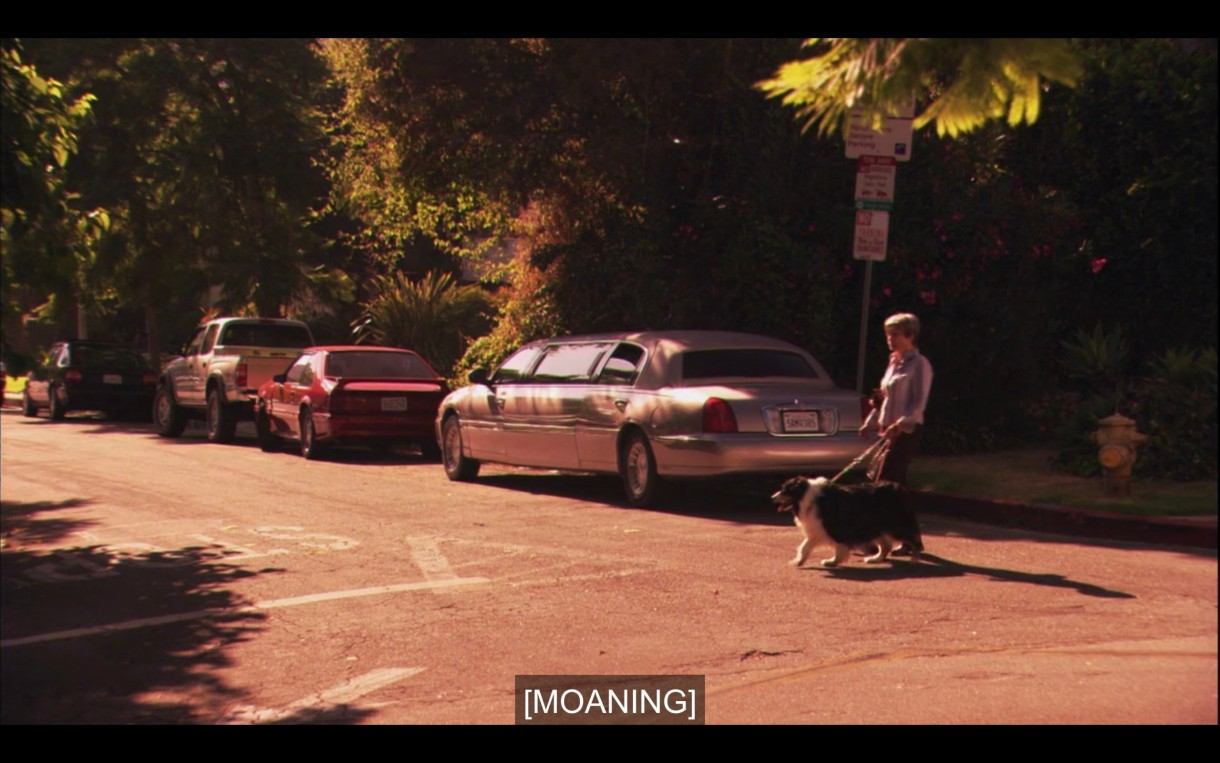 """A person walks a dog as they cross the street. Subtitles say, """"[Moaning]"""""""