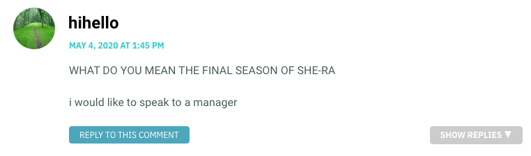 WHAT DO YOU MEAN THE FINAL SEASON OF SHE-RA i would like to speak to a manager