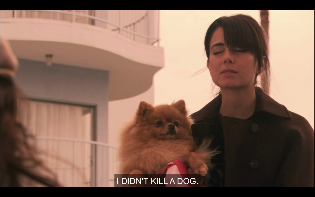 "Jenny in a black coat is holding a tan Pomeranian dog in her arms. She says, ""I didn't kill a dog."""
