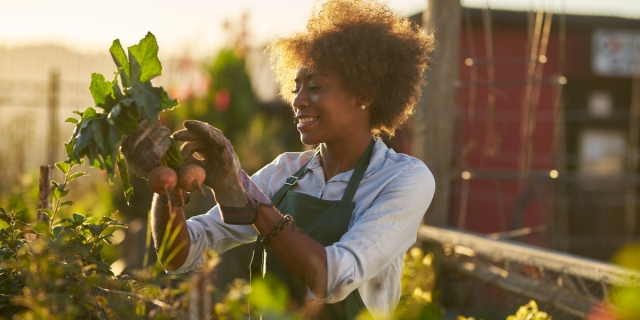 Black woman in a garden inspecting beets just pulled from the dirt and smiling