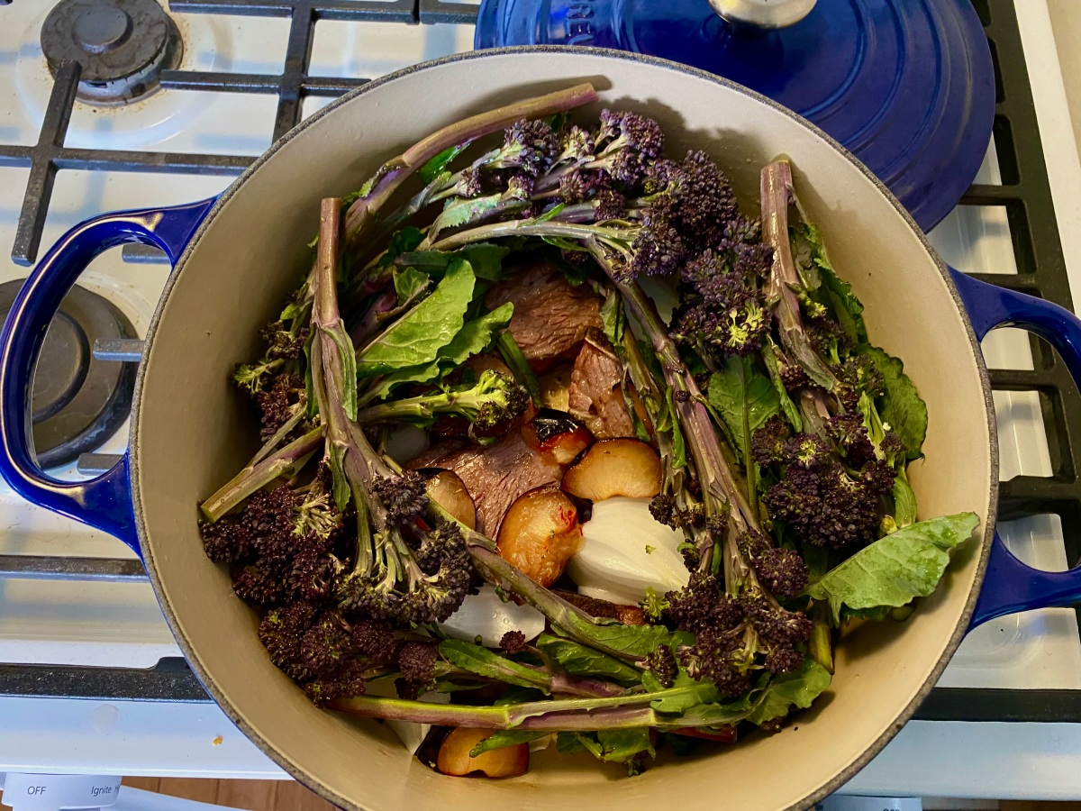 In a dutch oven on top of the stove, beef short ribs are nestled together with plum edges, onion wedges and covered in a wreath of broccolini