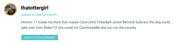 Hmmm 11 made me think that maybe Carol (Aird Tinkerbell Junior Bernard Sullivan) the dog could take over from Biden? If she could run Carolstraddle she can run the country