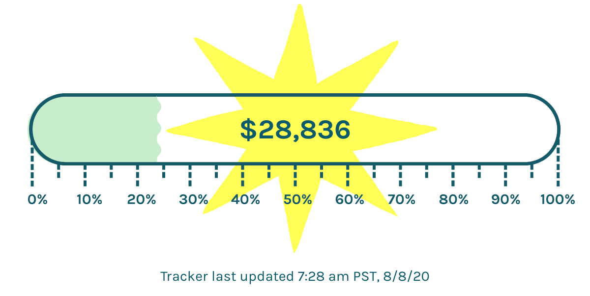 A tracker showing we are $28,836 to our $118,000 goal - updaded at 7:28am PST