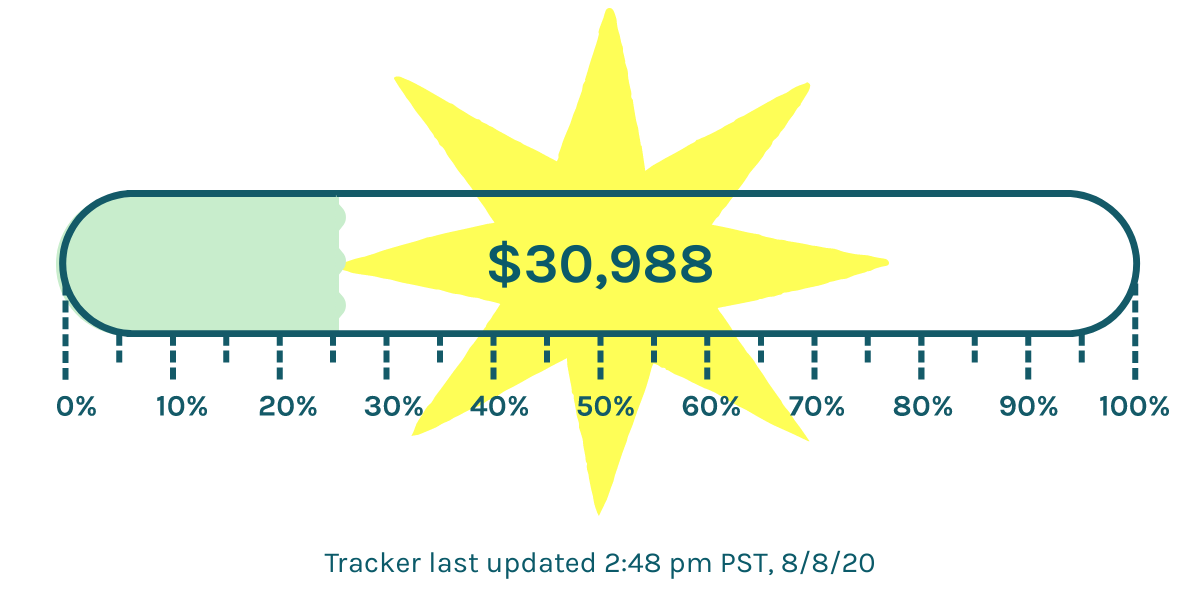 Tracker showing $30,988 to our $118,000 goal. Last updated 2:38pm PST 8/8/20