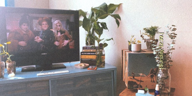 "A stylized photograph of Shelli's living room to look like it was taken with a polaroid camera in the 1990s. ""Hocus Pocus"" is playing on the television."